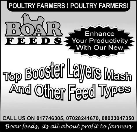 2015 nigeria poultry business plan for layers and broilers i want to start poultry business broiler or layer which is