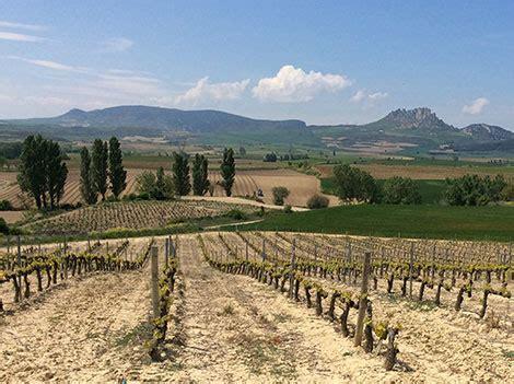 la rioja guia total rioja gu 237 a de estilos y categor 237 as spanish wine lover