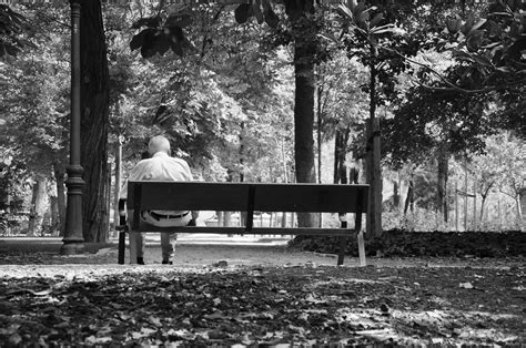 the bench com old man sitting alone on a bench cc0 photo