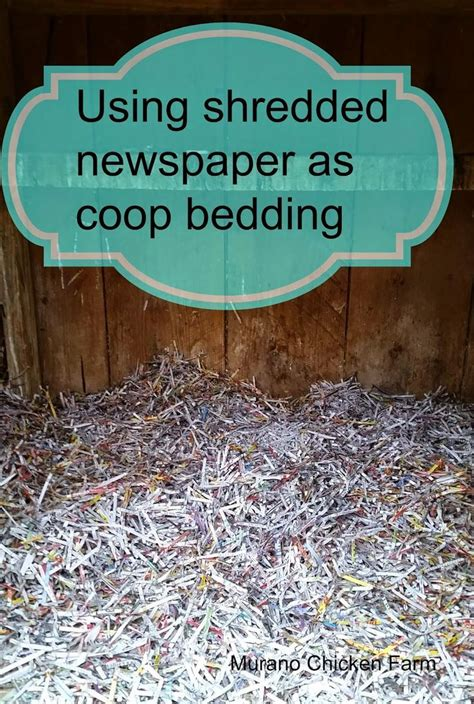 newspaper bedding using shredded newspaper as coop bedding coops