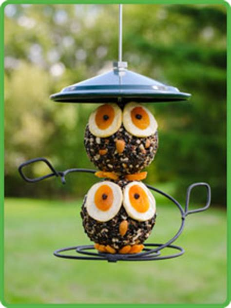 wbu owl seed cylinder feeder combo