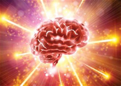 Brains Not Is Wired The Entertainment by Pqq El 250 Nico Suplemento Que Genera Nuevas Mitocondrias
