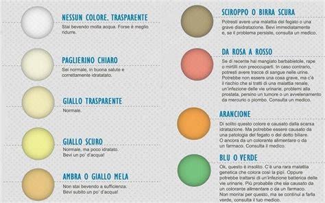batteri a tappeto nelle urine non cromopuntura dal colore delle urine possiamo