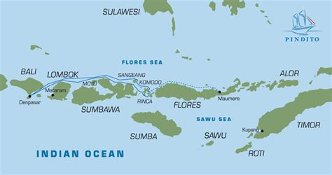 komodo islands wild dragons  snorkel heaven