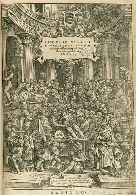 crackhead theater f working with the books anatomy gallery andreas vesalius de humani