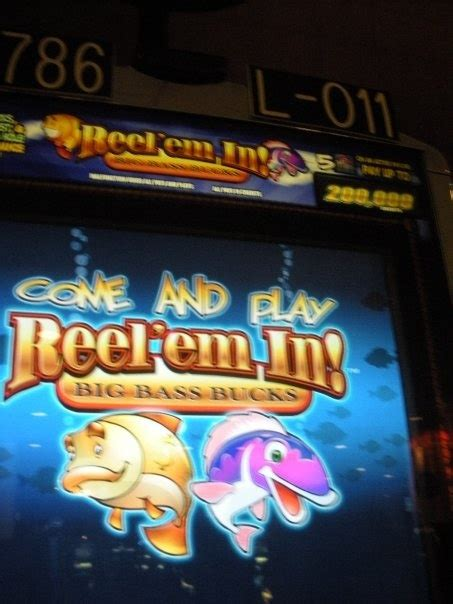 Lucky Charms Internet Sweepstakes - 17 best images about slot machines on pinterest new york casino games and game