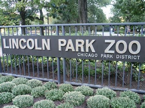 lincoln park zoo entry fee museum pass ward 33
