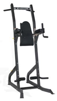 Dips Chaise Romaine by Hoist Pull Up And Dip Station Hf4962 Best Buy At Sport