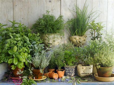 planning  garden  growing herbs
