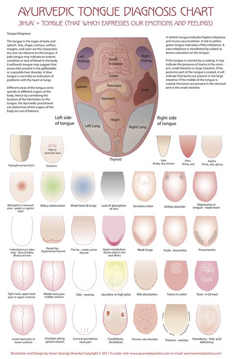 healthy tongue color what your tongue says about your health