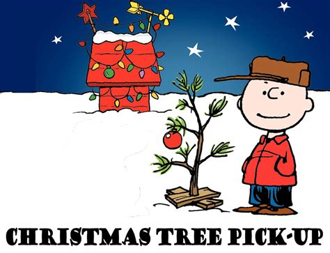 christmas tree pick up first presbyterian church