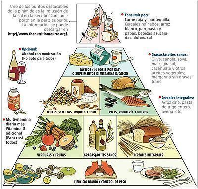 carbohydrates q significa verdades en la nutrici 243 n perro 33 la est 250 pida