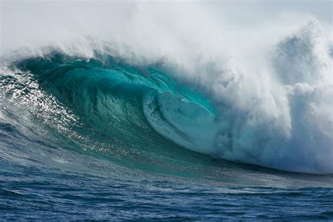 nuevo wave success stories riding the waves of big data
