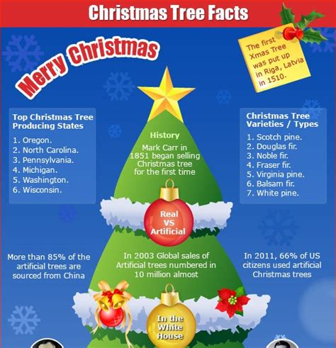 best christmas trivia facts top 5 tree infographics