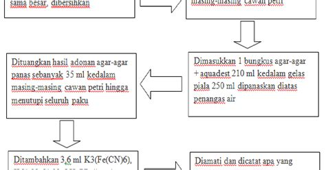 Kimia Anorganik Praktikum praktikum kimia anorganik percobaan i korosi besi