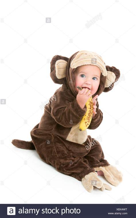 Baby Monkey Banana Suit monkey banana stock photos monkey banana stock images alamy