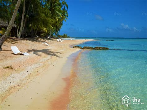 rurutu island rentals for your vacations with iha direct