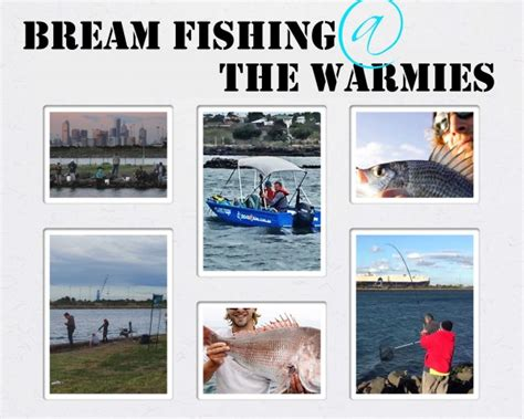 fishing boat hire melbourne no license bream fishing at the warmies melbourne boat rental boat