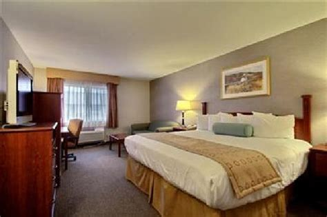 ultra king bed ultra clean king size bed picture of best western airport inn moline tripadvisor