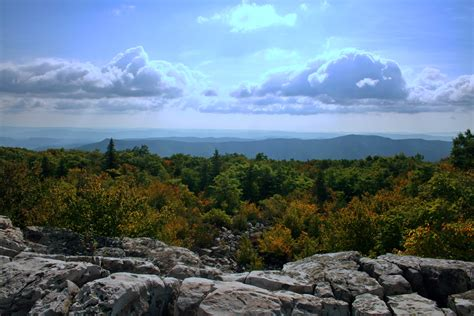 wilderness background dolly sods wilderness area background knowledge