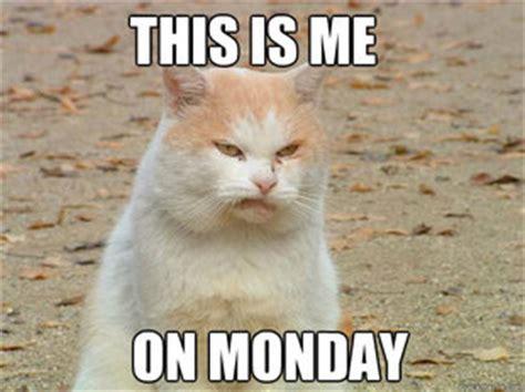Monday Meme - meme monday 10 21 13 weddingbee