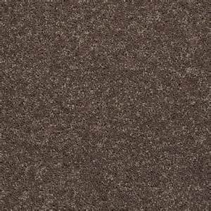 Shaw Carpeting Shaw Carpet Wholesale Discount Price Carpet Call Myers