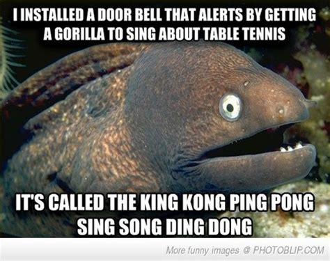bad joke bad joke eel s alarm bell joke hahaha