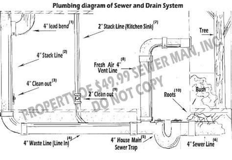 basement floor drain diagram 52 floor drain diagram basement cellar or basement drains vendermicasa org