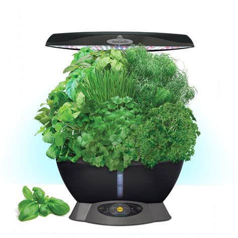 hydroponic indoor herb garden shop aerogarden classic 6 led hydroponic system 12 in