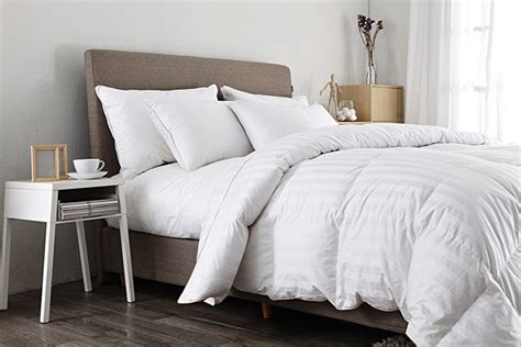 white down comforter twin com puredown white goose down comforter 600 fill