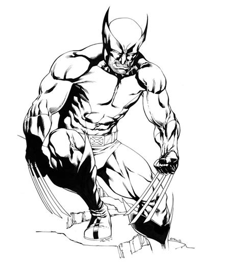 coloring pages wolverine animals free printable wolverine