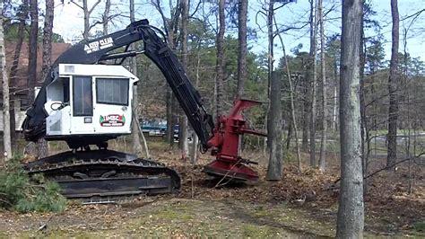 amazing tree amazing tree removal excavator