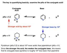 Protonated Amine Pka Basicity Of Amines And Pkah Master Organic Chemistry