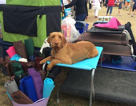 k9 ballistics dog bed extra large dog beds by k ballistics dog beds and costumes
