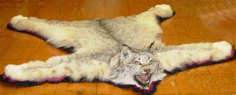lynx rug robertson artworks