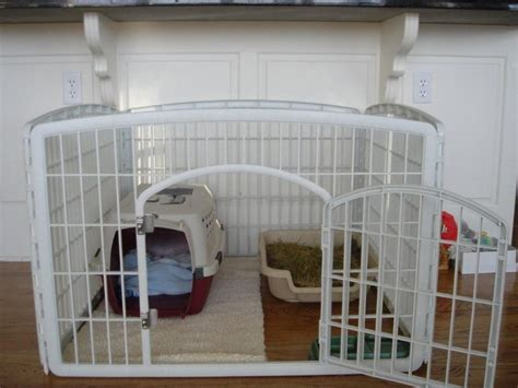 dog training house training what a creative puppy play pen cool ideas pinterest