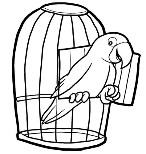 coloring pages of bird cages free bird cage coloring page coloring pages pinterest