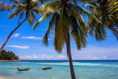 koh phangan best place to stay where to stay in koh phangan thailand best hotels hostels