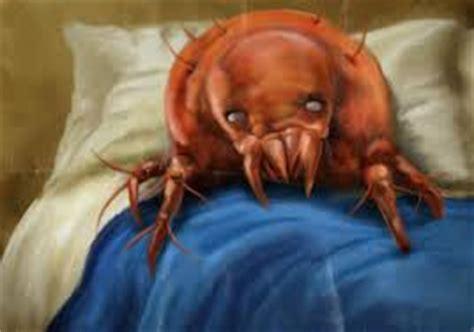 acari materasso prurito dormiamo da soli acari prevenzione news