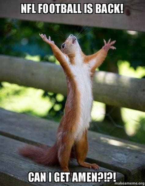 Football Is Back Meme - nfl football is back can i get amen happy squirrel