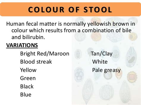 Cause Of Stool by Human Stools Images