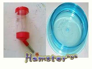 aksesoris hamster segitu petshop