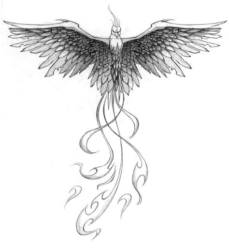 phoenix wings tattoo designs 25 best ideas about design on