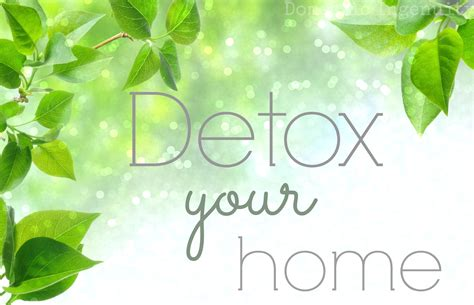 Detox Your Home Class Living by Detox Your Home
