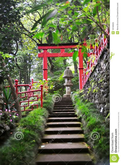 Tree Branch Banister Monte Palace Tropical Garden Royalty Free Stock Photo