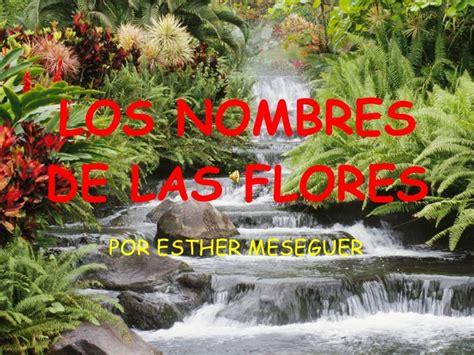 imagenes flores y nombres los nombres de las flores