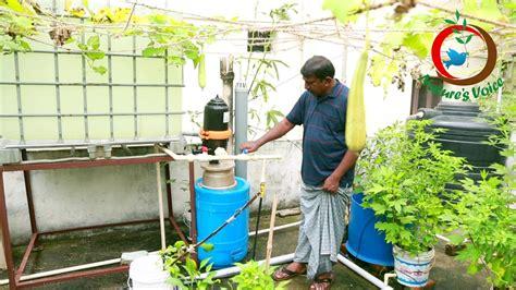 grow   food ii intensive fish farming  terrace