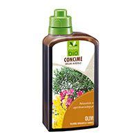 concime per olivo in vaso concime per olivi oleandri bouganville e mimose prestobio