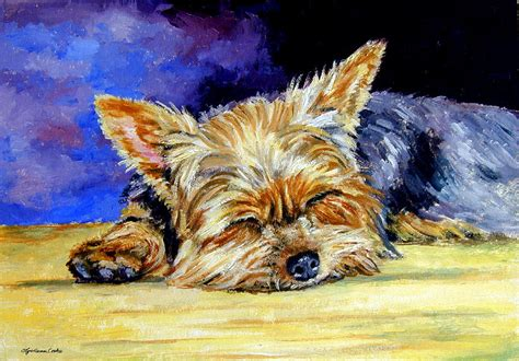 yorkie painting sun light snoozer terrier painting by lyn cook
