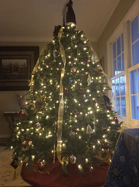 how to makeacheistmas tree stau up how should a tree stay up stacey wilk author